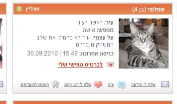 כרטיסיה של אחד החתולים באתר. צילום מסך: LoveMeow